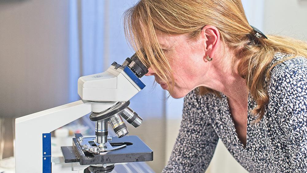 Untersuchung Mikroskop